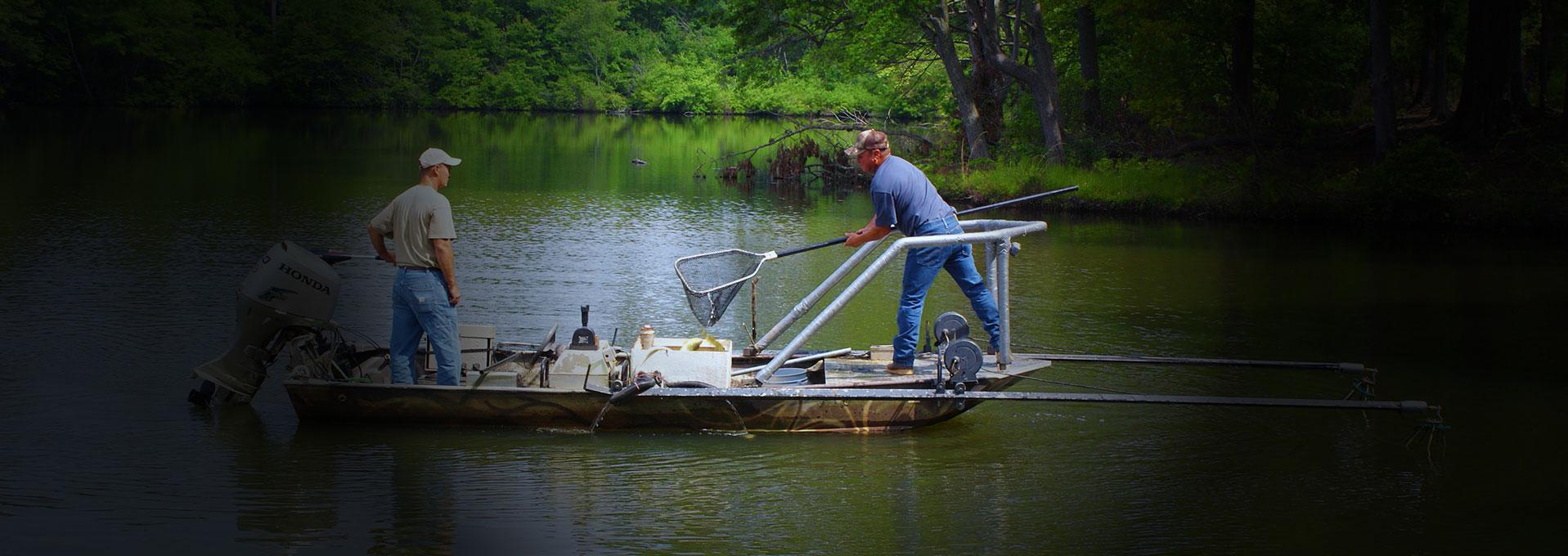 Applied aquatics inc for Fish pond fertilization